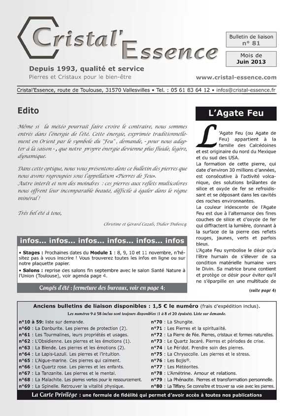 Bulletin 81