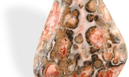 Le Jaspe léopard est utile pour développer la souplesse d'adaptation.